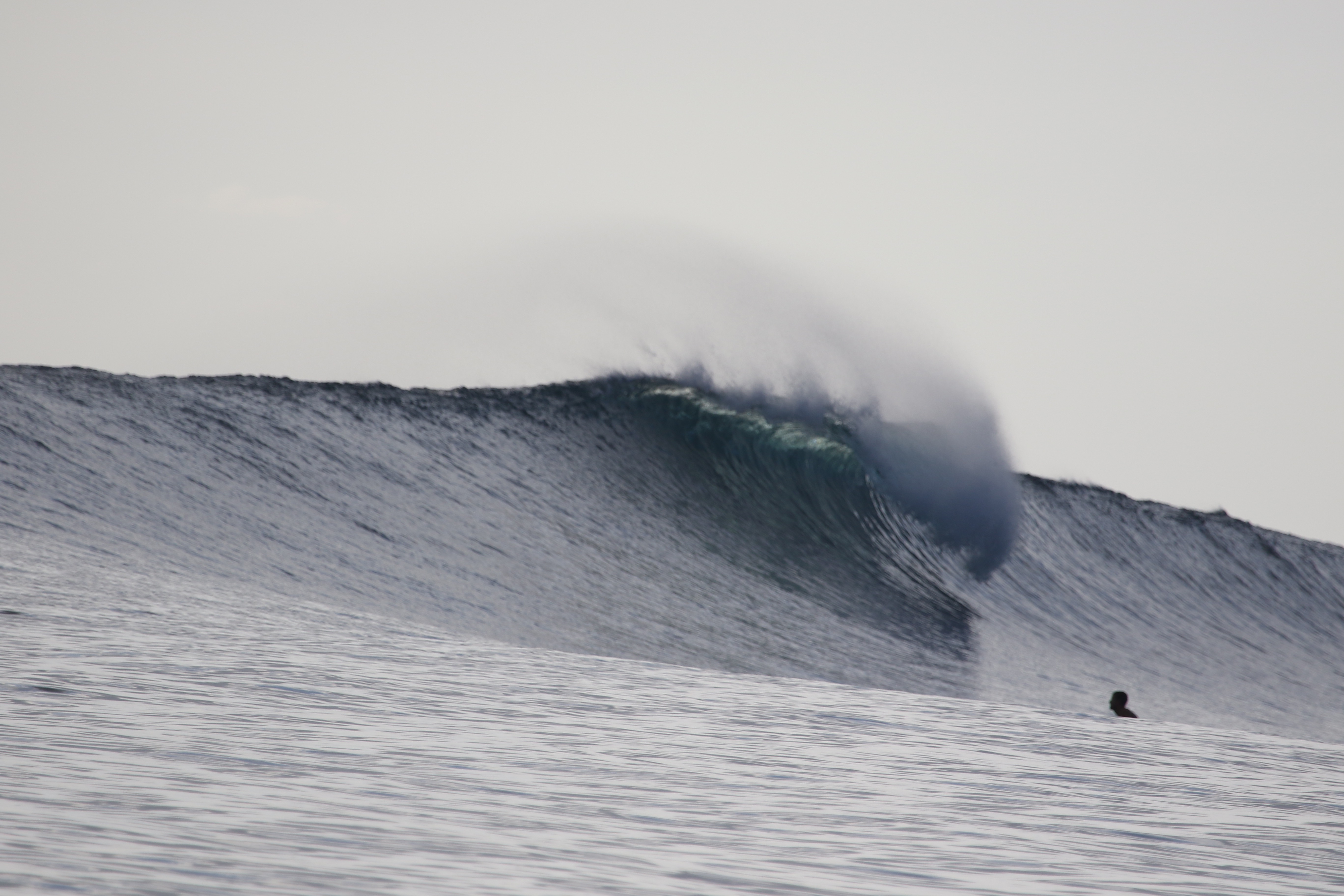 mentawai surf