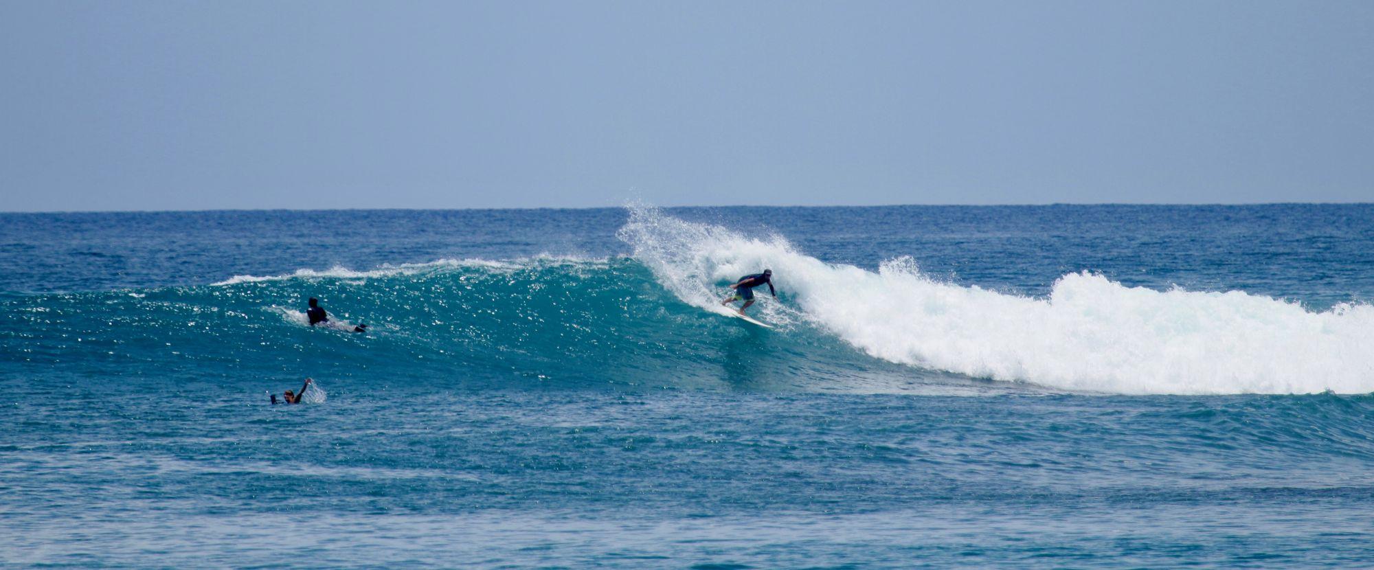banyaks surf