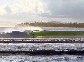 Mentawai Surf Lodge Special Offers